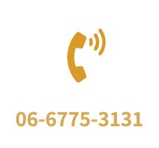 0667753131
